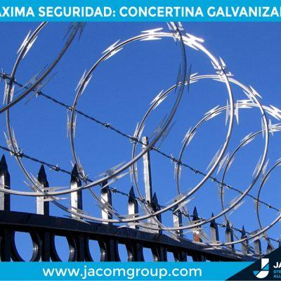 campaña concertina-02