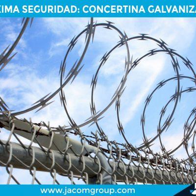 campaña concertina-05