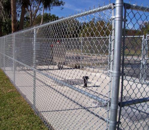 fences-9-1030x773-1030x773